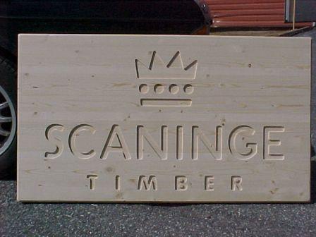 scaninge1